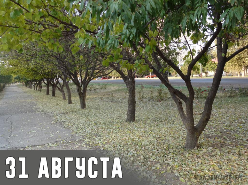 Ситуація в Армянську: в мережі показали свіжі фото з міста-катастрофи