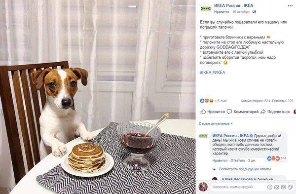 IKEA сравнила женщин с собаками. И попала в скандал