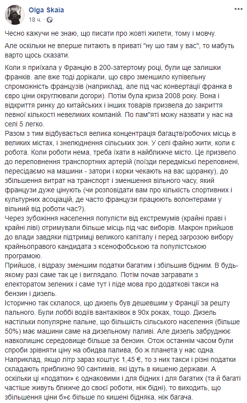"""Українка з Франції розклала все по поличках з приводу """"жовтих жилетів"""". Не в Путіні там справа"""