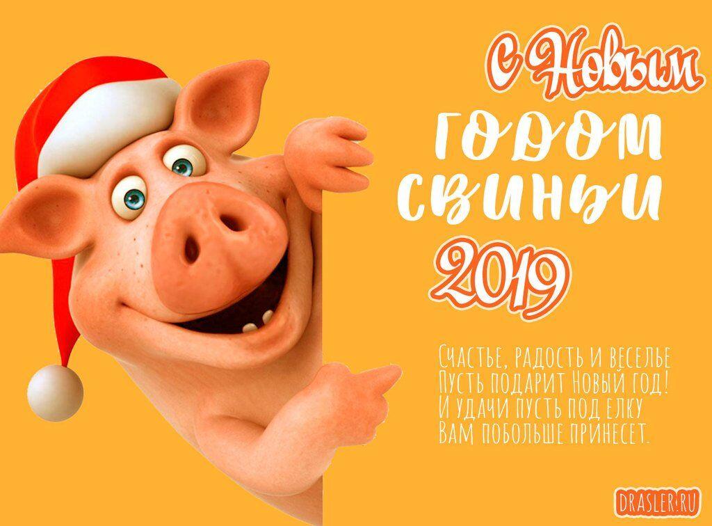 Поздравления с Новым годом 2019: лучшие открытки, картинки, приколы и стихи