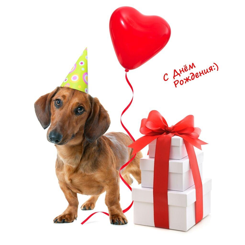Поздравления с днем рождения: в стихах, прозе и картинках