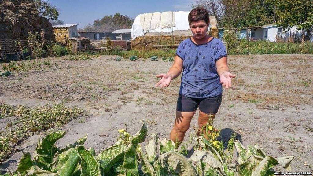 """Сгорело все: появился грустный рассказ, фото и видео последствий """"химатаки"""" в Крыму"""