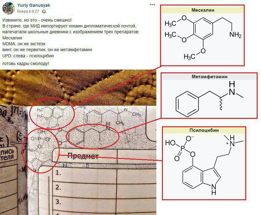 """""""Новини Росії"""": хімік виявив в дизайні шкільних щоденників формули наркотиків"""