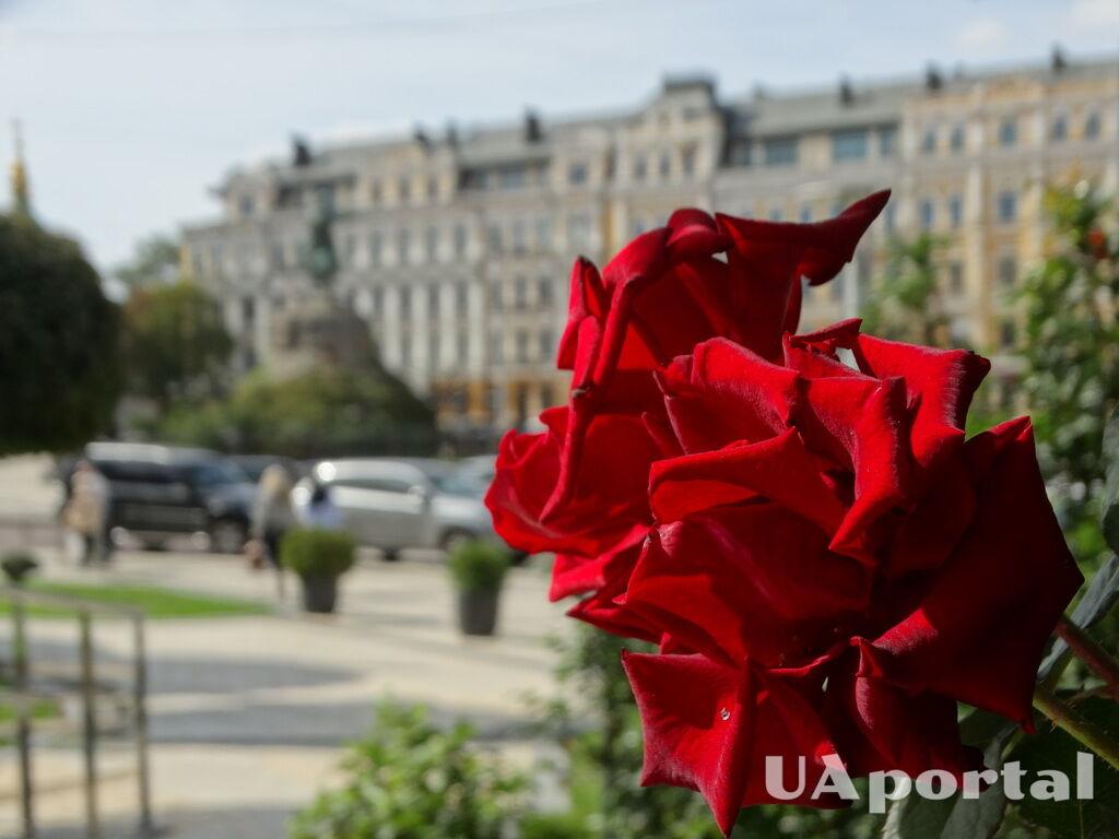 Фото осеннего Киева: сентябрь 2018