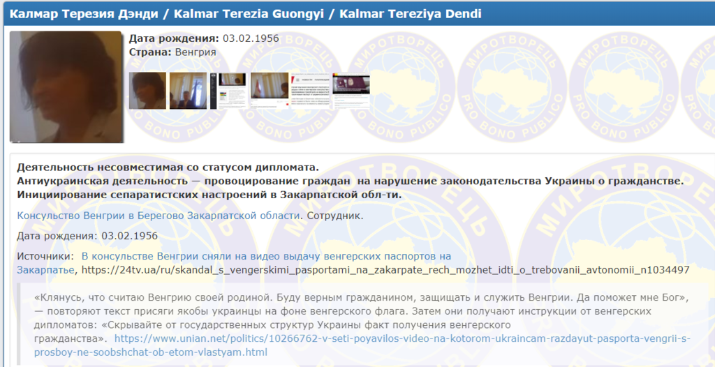 Названы организаторы выдачи венгерских паспортов украинцам на Закарпатье