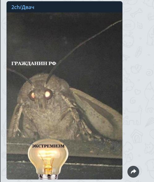 Мем з метеликом: звідки з'явився