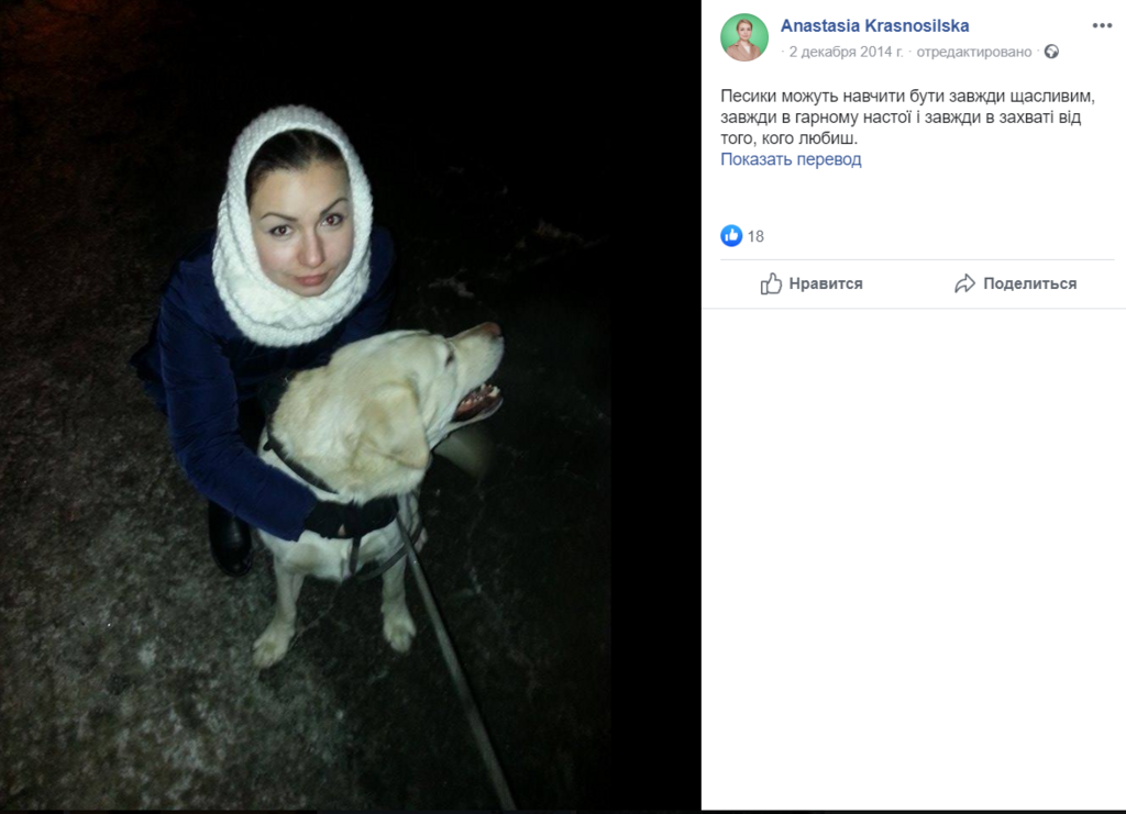 """""""Бесценное"""" имущество: в декларации """"Слуги народа"""" нашлась кошка Маруся, ее фото"""