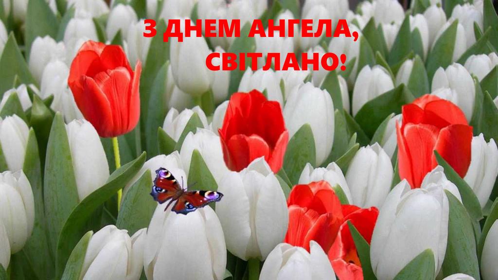 З Днем ангела, Світлана! Картинки і листівки для поздоровлення на свято 16 листопада
