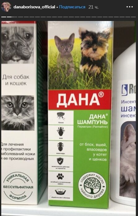 Дана Борисова после шока от видео Панина 18+ показала кошку и собаку