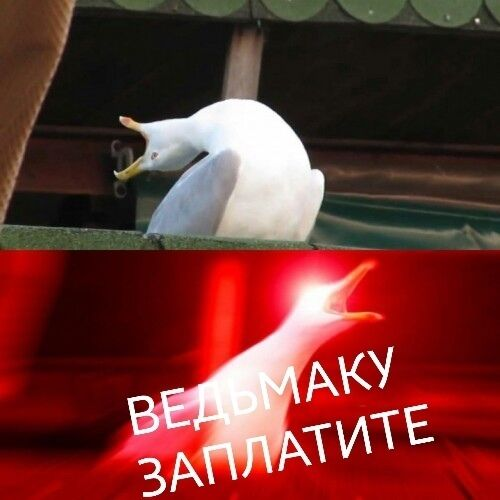 """Самые смешные мемы по сериалу """"Ведьмак"""""""