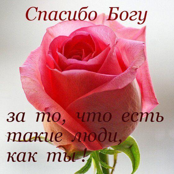 Поздравления с юбилеем для женщины и мужчины: оригинальные стихи и картинки