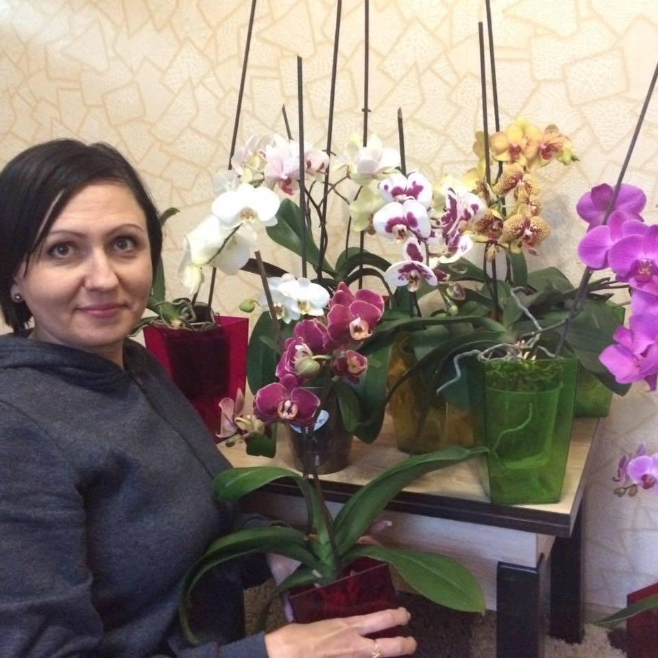 Олена Бухтата: що відомо про дружину убитого працівника Адміністрації Порошенка