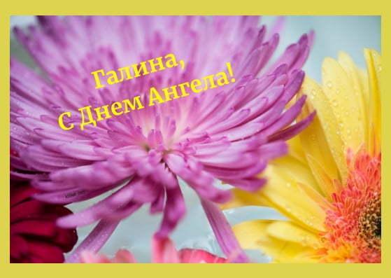 Привітання з Днем ангела Галини: зображення, листівки, вірші