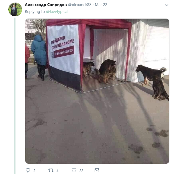 """""""Юля прийде, п*зда тобі буде"""": агітація Тимошенко підірвала мережі"""