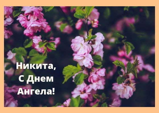 День ангела Никиты: стихи и открытки для поздравления на именины