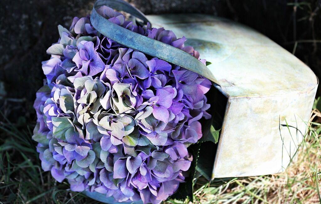 День ангела Лідії: привітання і картинки на іменини