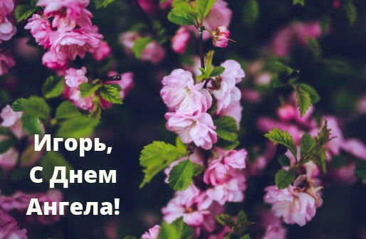З Днем ангела, Ігор! Кращі привітання на іменини