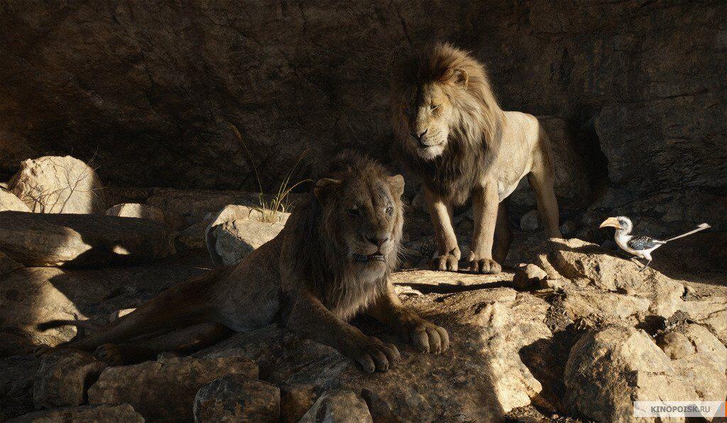 Король Лев 2019: відгуки критиків і тривалість, дивитися трейлер