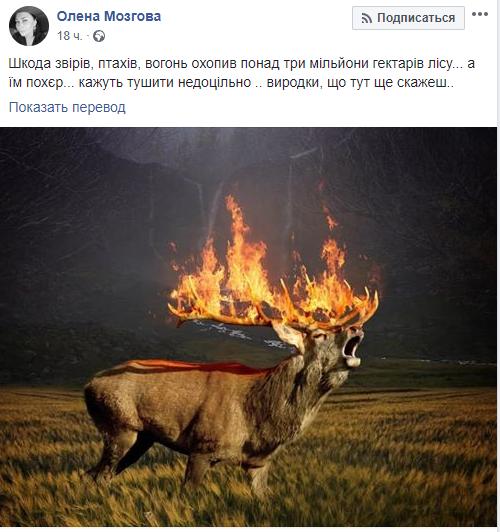 """""""Выродки"""": Алену Мозговую ужаснула российская трагедия"""