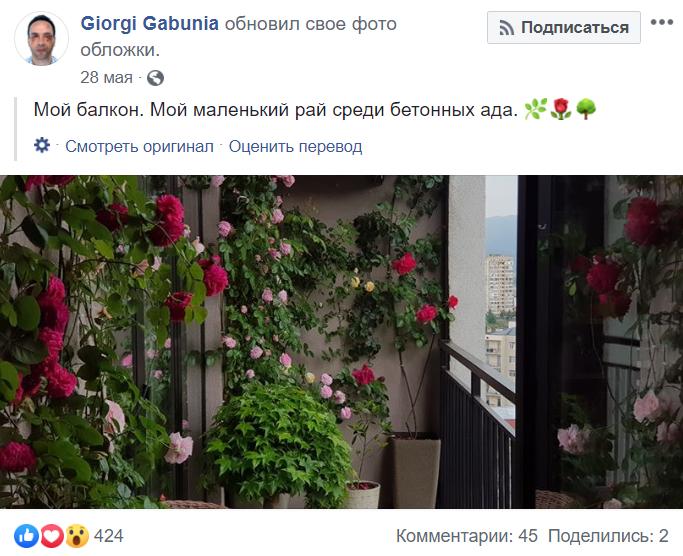 """""""Мой маленький рай"""": как Георгий Габуния ведет свой Фейсбук"""
