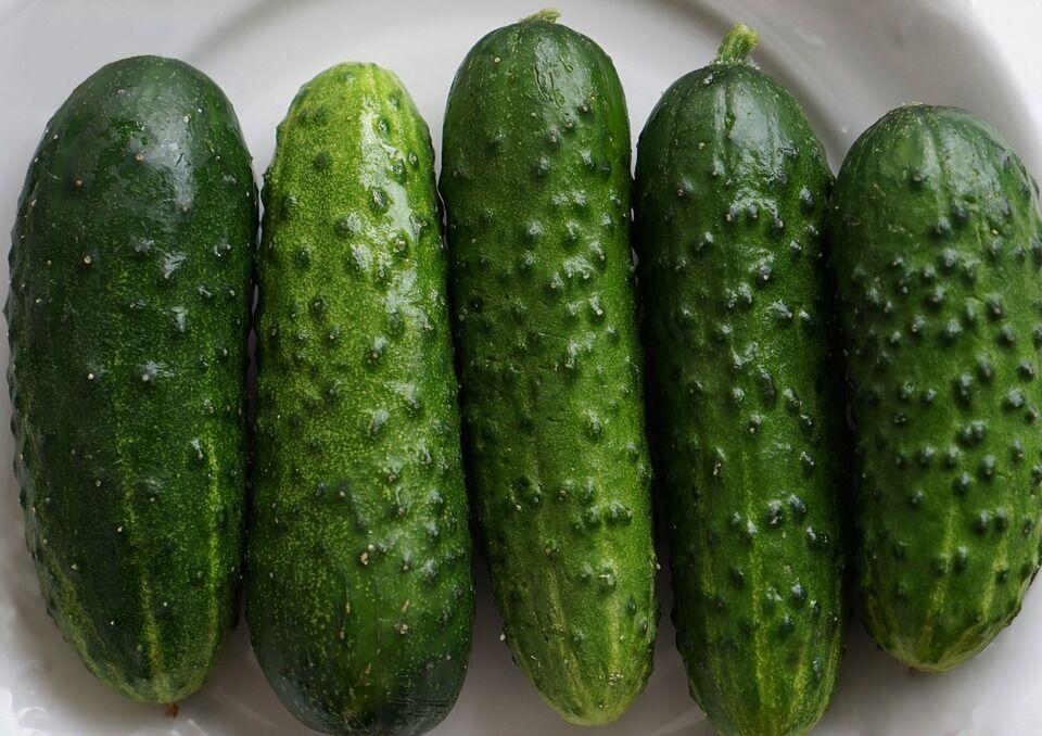 Рецепт смачних огірків з гірчицею на зиму