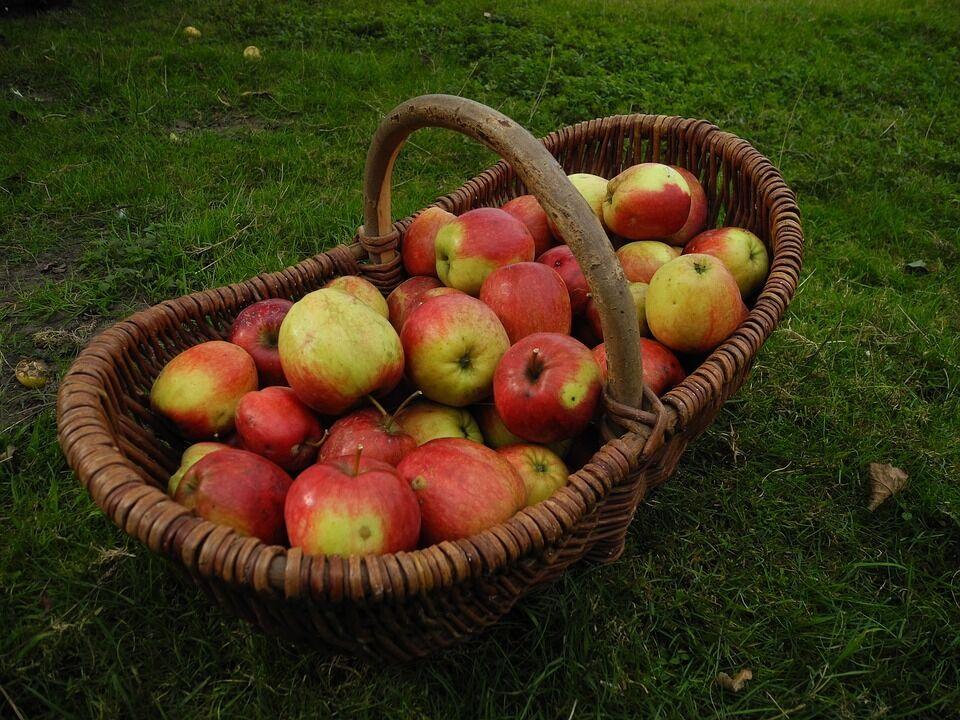 Что святят на Яблочный спас и что нельзя святить