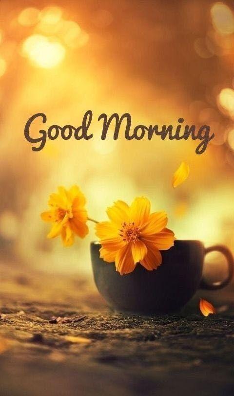 Доброго ранку: красиві листівки і картинки