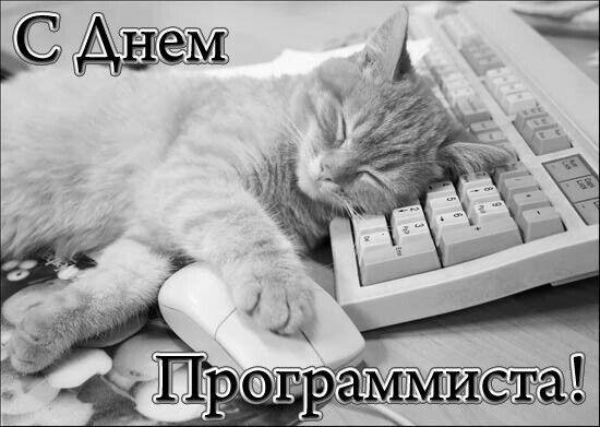Праздник 13 сентября - День программиста: поздравления, открытки и стихи