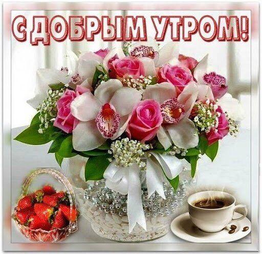 С добрым утром! Прикольные открытки и картинки
