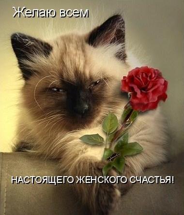 Веселые поздравления с Днем женского счастья