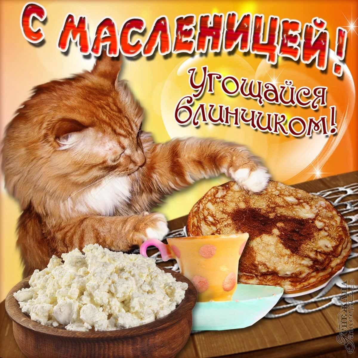 С Масленицей! Яркие открытки и картинки для поздравления на праздник