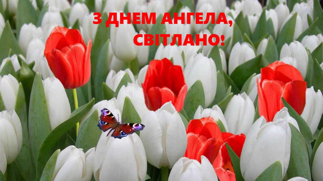 С именинами, Светлана! Оригинальные открытки для поздравления на День ангела
