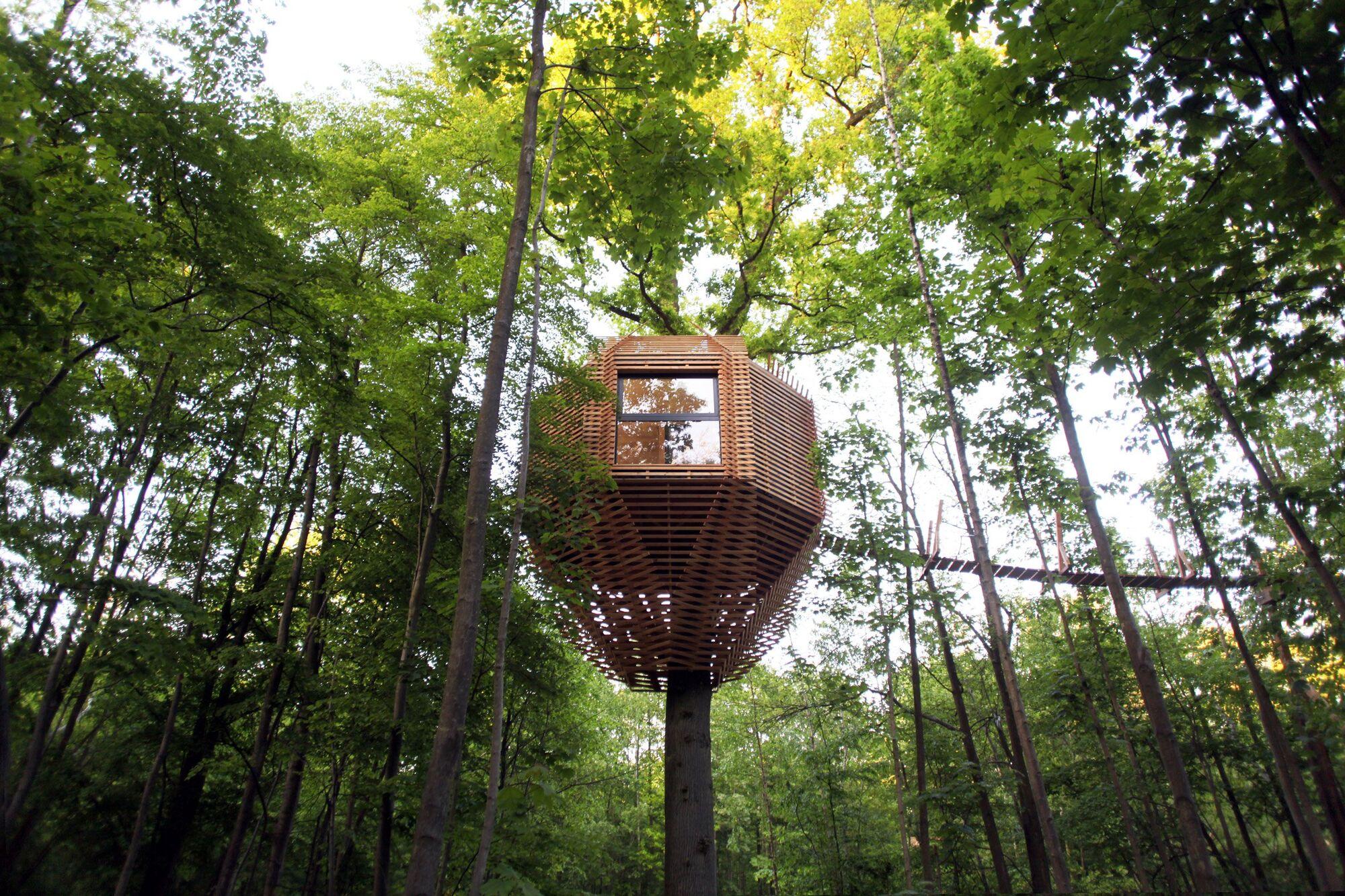 Для тих, хто лишився трохи дітьми: професійний будиночок на дереві від професійних архітекторів (ФОТО)