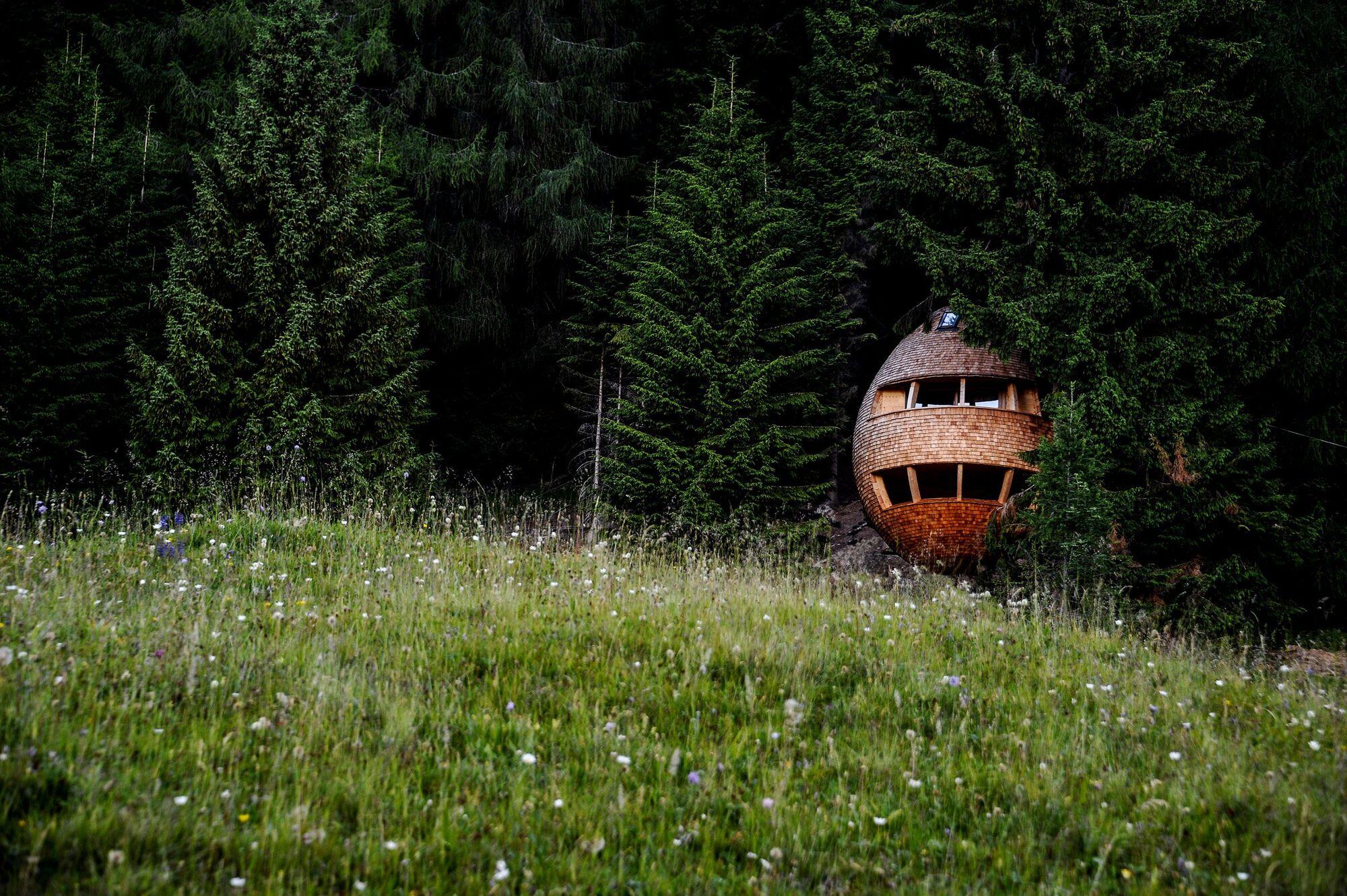 Ідея, наче спеціально для Карпат: колиби у вигляді яєць (ФОТО)