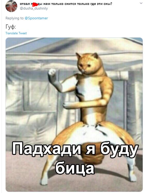 Гуф и собака: лучшие мемы и шутки на злобу дня