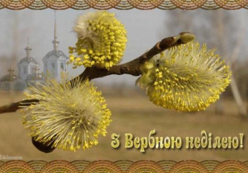 З Вербною неділею 2020! Листівки та картинки для привітання на свято