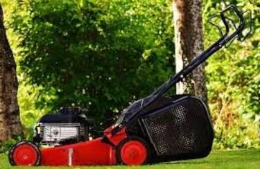 Выбираем газонокосилку: виды техники для покоса