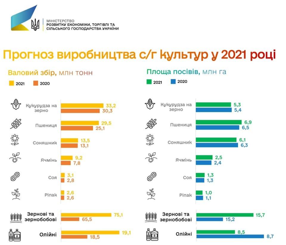 Урожай зерновых в Украине на уровне 75,1 млн тонн: прогноз