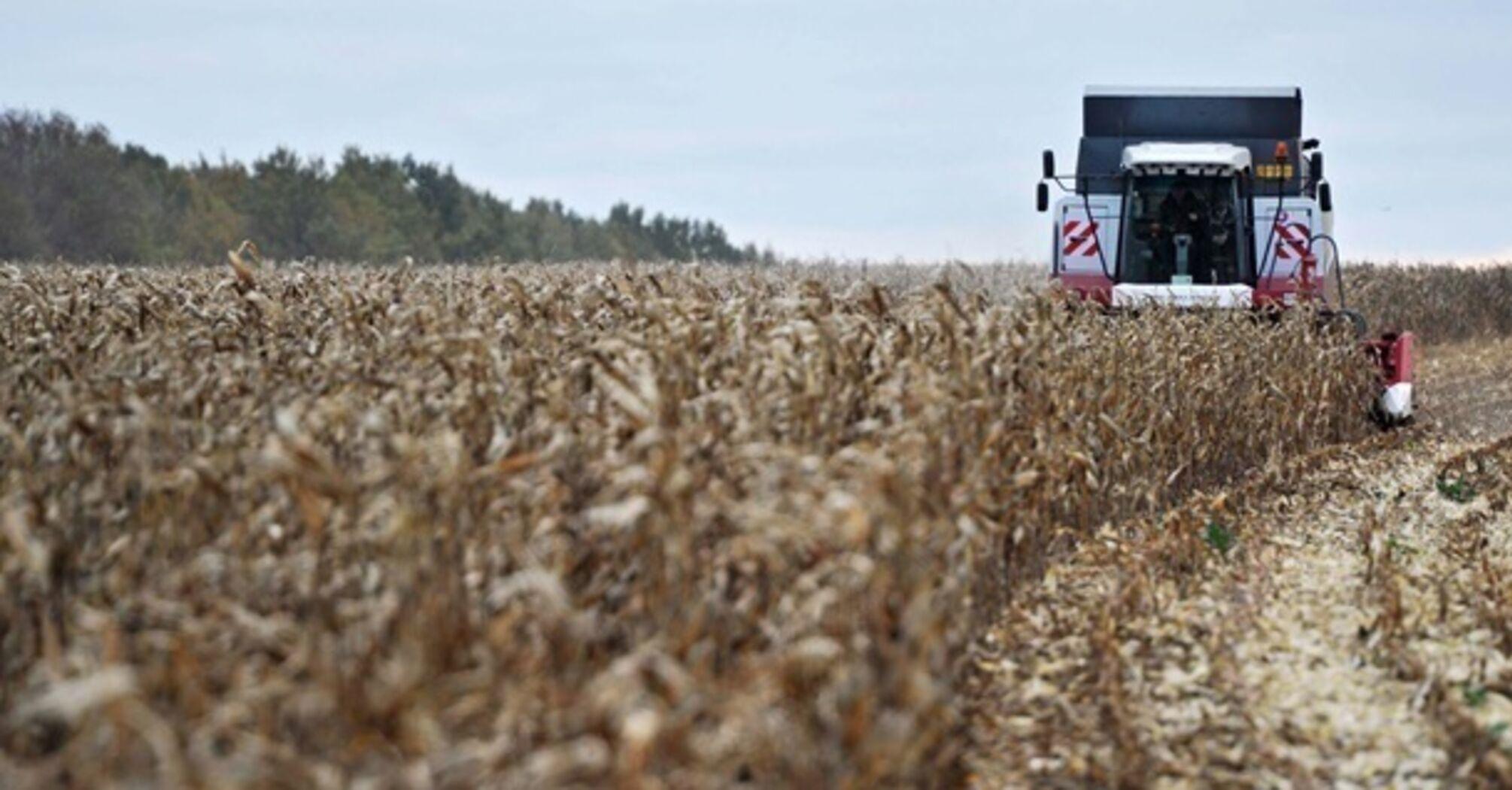 Украина собрала 64,3 млн тонн зерновых, завершается уборка кукурузы