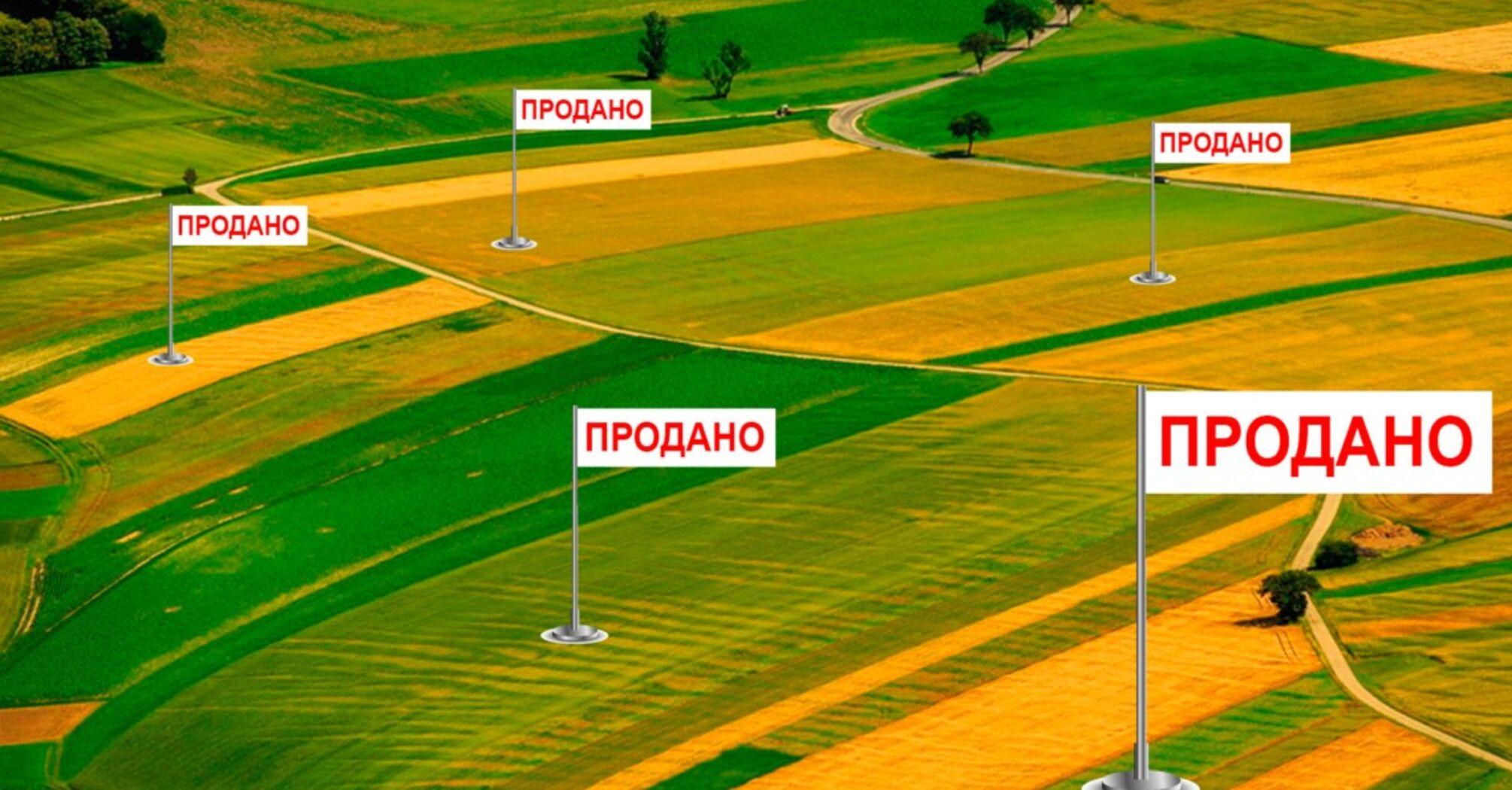 Продажа земли в Украине: что угрожает украинцам и о чем молчит власть