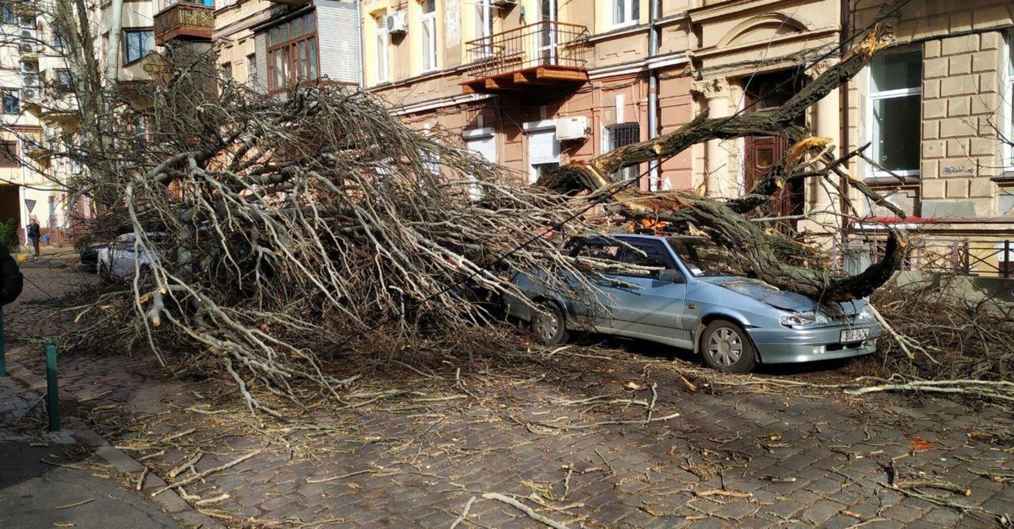 """Погода в Одессе: жуткие фото и видео последствий циклона """"Юлия"""""""