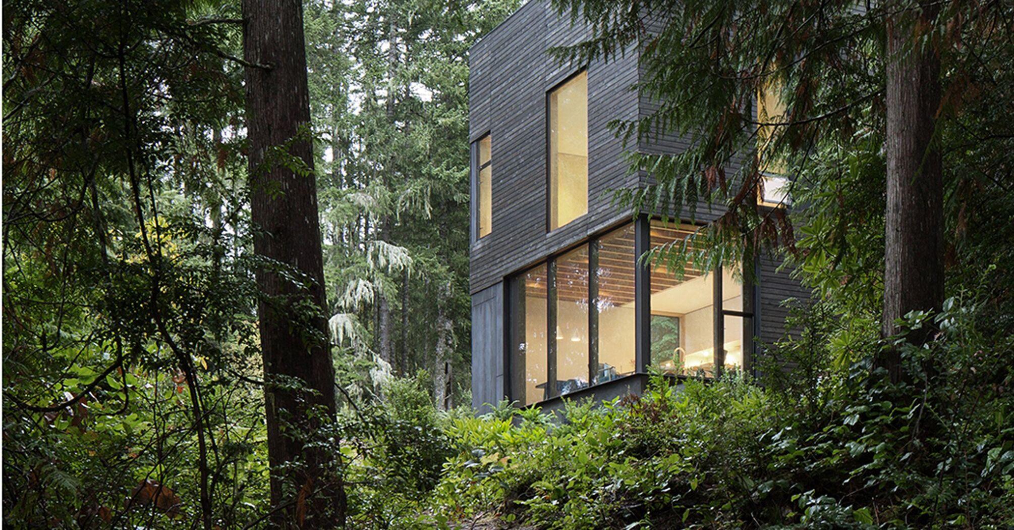 Добрий смак: маленька хатина ховається в американських лісах.