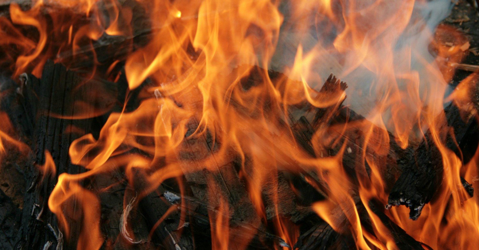 """До зими вигорить вся країна..."" В ДСНС стурбовані пожежами в екосистемах України"