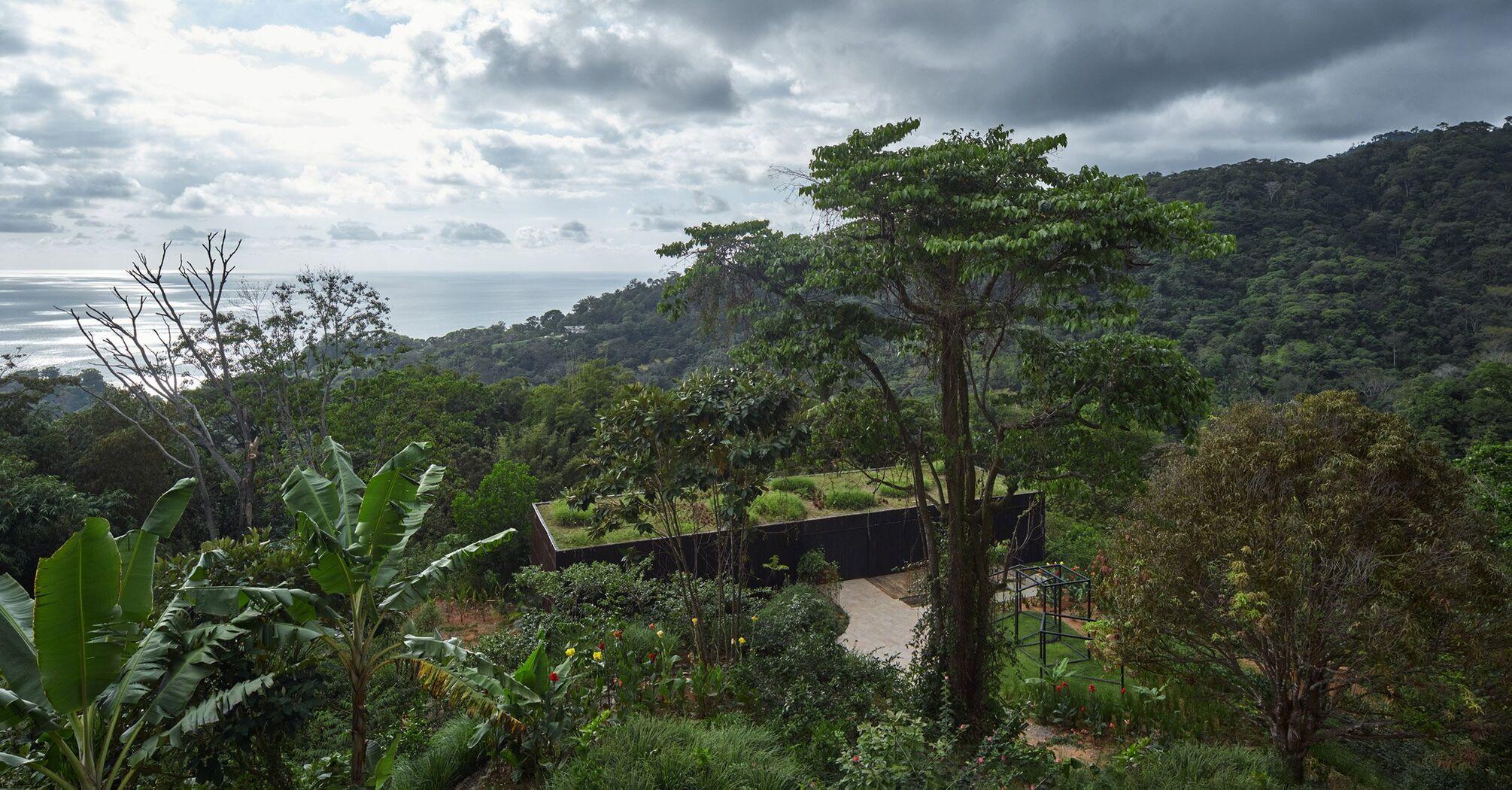 Ескапізм дня: дім у джунглях іще й вкрили зверху рослинністю