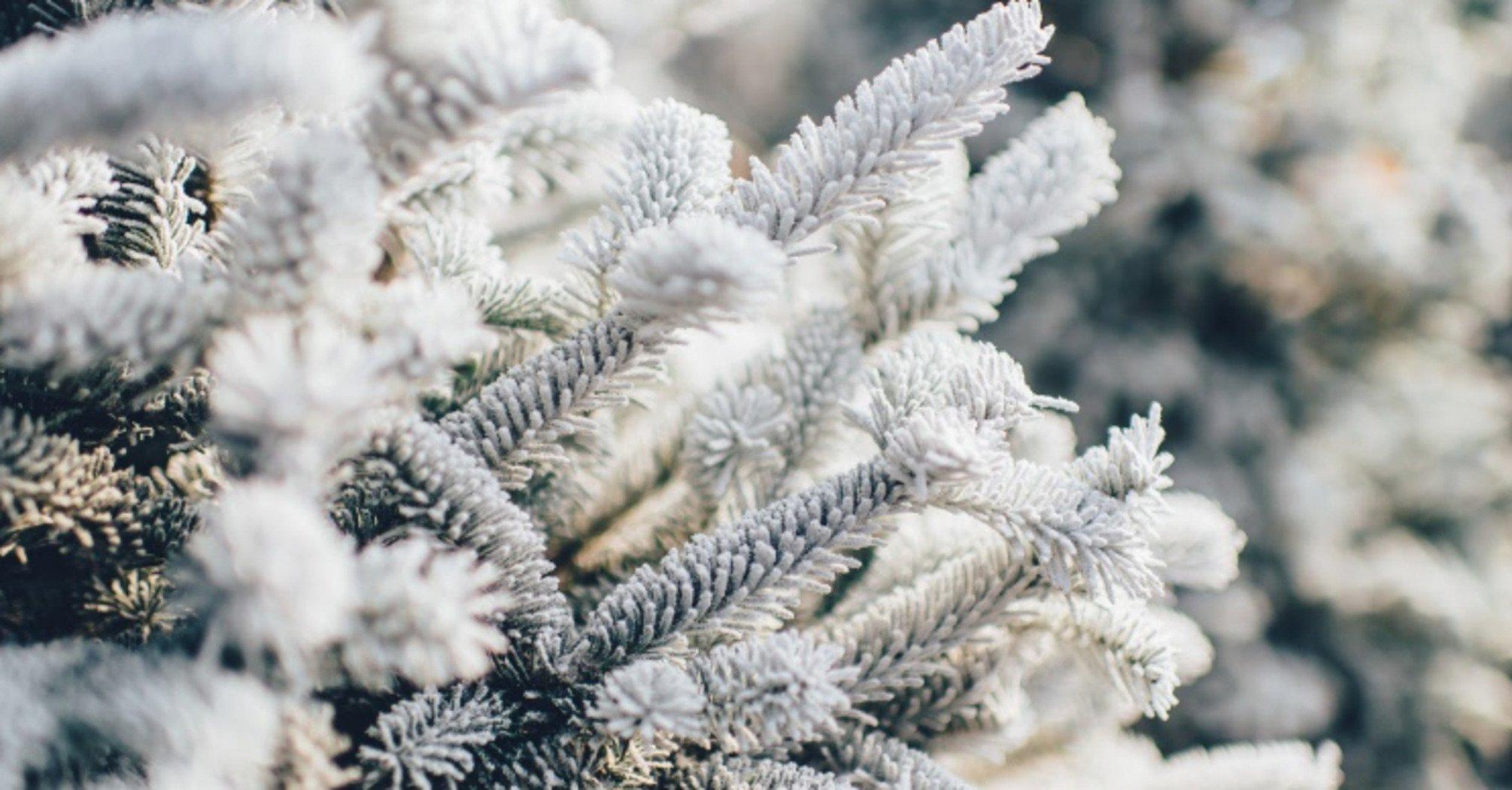 Ожидаем ухудшение погодных условий: синоптики предупредили о сильных морозах