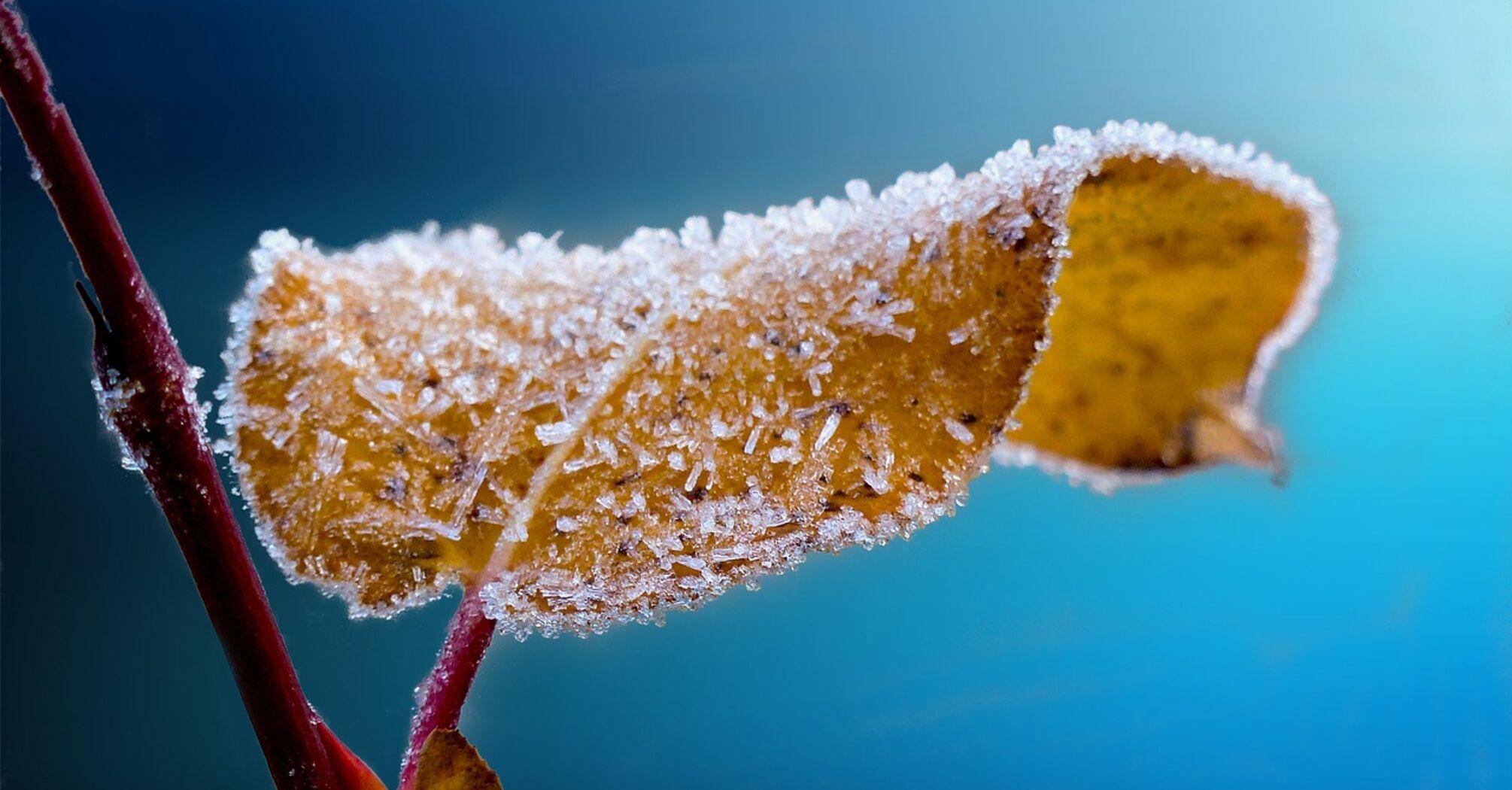 В Украине похолодает до -9: синоптик уточнила прогноз погоды на пятницу